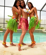 Bailey Knox Hula Girls Gone Wild