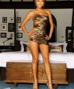 KT So Shiny Dress