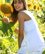 This Years Model Michelle Sunflowers
